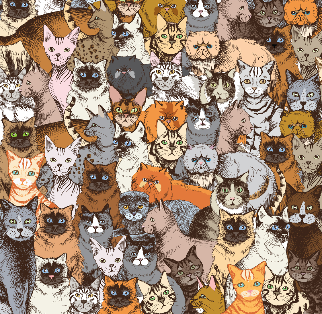 Cat-jigsaw-puzzle-world's-most-difficult-double-sided-puzzle